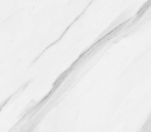 CATALINA MONTEBELLO STATUARIO GLOSS WHITE TILE 300X450mm